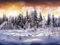 Χειμώνας στο δρόμο - Αυτή η εικόνα δείχνει τη χειμερινή περίοδο με τα παιχν�