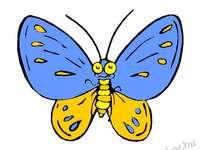 lepkék - ez a kép rovarokat tartalmaz
