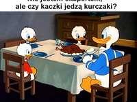 DONALD DUCK - Kaczor Fauntleroy Donald (Donald Fauntleroy Duck, propriété de Paperino) - fils de Kaczor Kwaczymo