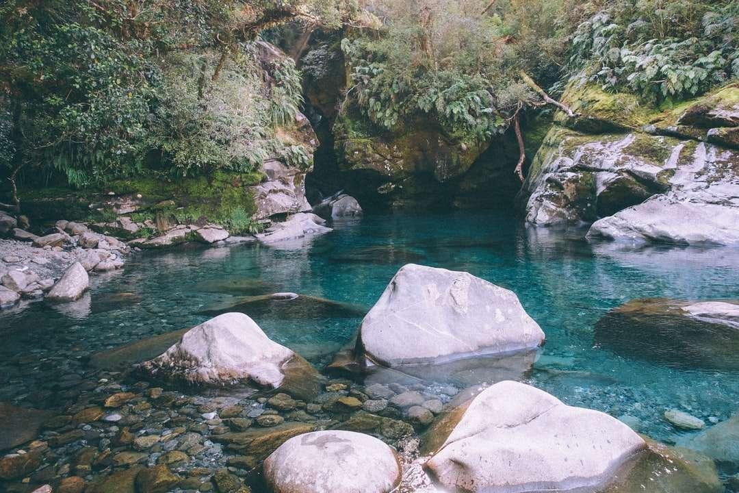 cuerpo de agua entre rocas grises y musgo verde - cuerpo de agua entre rocas grises y musgo verde durante el día. . Nueva Zelanda (6×4)