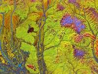 makró sárga és tarka absztrakt művészet - Az élénk színek és a bizarr formák olyan képpé állnak össze, amely ötletes illusztráció