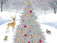 L'albero di Natale - L'albero di Natale nella foresta in mezzo alla neve