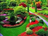 pěkně udržovaná zahrada - pěkně udržovaná zahrada