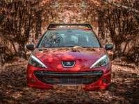 rött Peugeot-fordon under dagtid - Höst med bil?. Hamedan, Iran