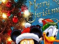 PATO DONALD - Kaczor Fauntleroy Donald (Donald Fauntleroy Duck, de propriedade de Paperino) - filho de Kaczor Kwac