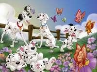 le groupe des Dalmatiens - dans cette image est représentée une scène de 101 DALMATIENS