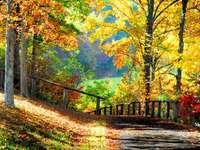 Herbst im Park - m ....................