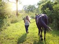 Häst och en flicka - nom .. här måste du ordna en häst som går till betesmark xdd