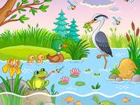 djur vid sjön - djur vid sjön
