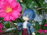 Mikazuki csodálja a gyönyörű virágokat - Mikazuki csodálja a gyönyörű virágokat