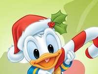 ΝΤΟΝΑΛΝΤ ΝΤΑΚ - Kaczor Fauntleroy Donald (Donald Fauntleroy Duck, ιδιοκτησία της Paperino) - γιος �