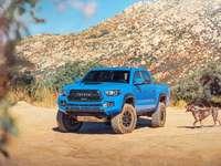 kék suv a barna földúton napközben - Az ember legjobb barátai ... Terepjáró egy Toyota Tacomában, San Diego mellett, Kalifornia. San