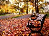 есен в парка - м ....................
