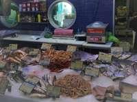 Affär.. - Fisk- och skaldjursbutik ..