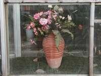 rózsaszín virágok barna agyagedényben