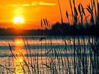 Słońce nad jeziorem
