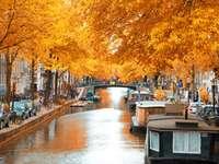 amszterdam ősszel