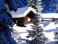 L'hiver et sa beauté