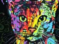 Festői macska