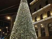 Arbre de Noël Naples Italie
