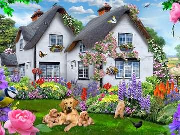 Боядисване на двуфамилна къща в страната с кучета