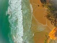 widok z lotu ptaka na plażę w ciągu dnia