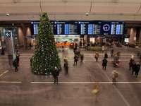 embercsoport belsejében épület karácsonyfa