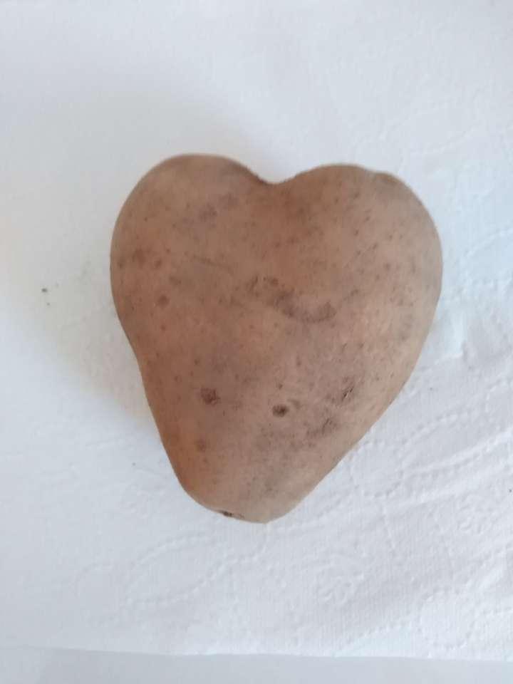 coração feito de batata - que batata adorável coração eu recomendo (6×9)