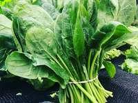 zelená listová zelenina