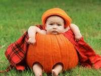 bebê na abóbora vermelha