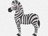 zebră alb-negru