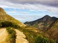 campo de grama verde e montanha