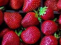 dużo owoców truskawek