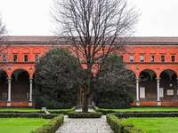 Cattolica University of Milan Italy
