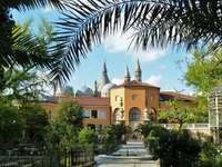 Padua Botanical Garden Italy