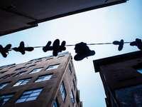 χαμηλής γωνίας φωτογραφία κρεμασμένων παπουτσιών στο τσίμπημα κατά τη διάρκεια της ημέρας