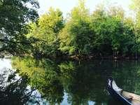 кафява лодка на езеро, заобиколено от зелени дървета през деня