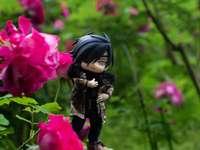 Mitsu au milieu des roses