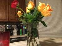 Blumen von schönem