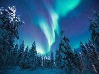 Aurora Borealis la Crăciun