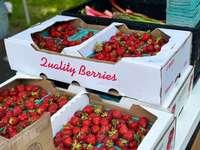 φράουλες σε κουτί από λευκό χαρτόνι