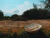 λευκή βάρκα σε χωράφι με γρασίδι κατά τη διάρκεια της ημέρας