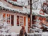 Снежна къща