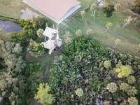 fákkal körülvett ház légi fényképezése