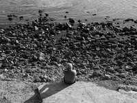 foto in scala di grigi di donna seduta su una panchina di cemento
