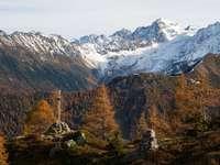 árboles marrones cerca de la montaña cubierta de nieve durante el día