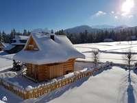 cabaña de troncos en las montañas