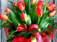 bukett med röda tulpaner