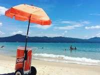 carrinho de golfe vermelho e preto na praia durante o dia