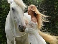 miluji koně